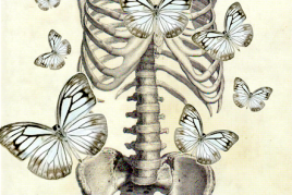 Sacro-Iliac Repair & Spinal Integrity: